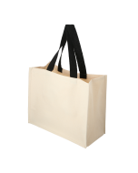 Laminated canvas shopping carrier bag